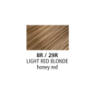 Picture of Clairol Professional Soy4PLex