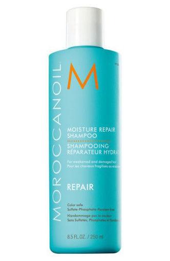 Picture of Moroccan Oil Moisture Repair Shampoo Repair 8.5 fl oz