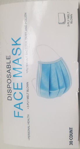 Picture of Disposable Face Mask (30 Count)
