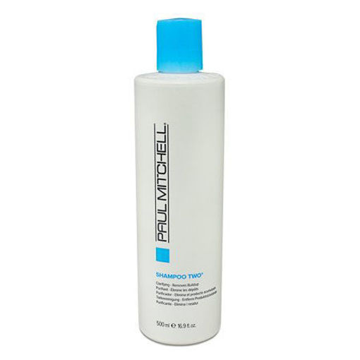 Picture of paul mitchell shampoo two 16oz